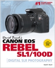 cover image - David Busch's Canon EOS Rebel SL1/100D Guide to Digital SLR Photography