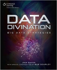 cover image - Data Divination, Big Data Strategies