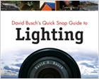 cover image - David Busch's Quick Snap Guide To Lighting